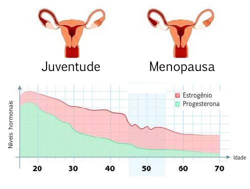 hormonios.jpg