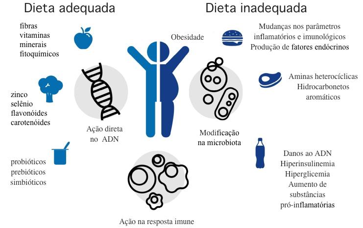 De Almeida et al., 2019