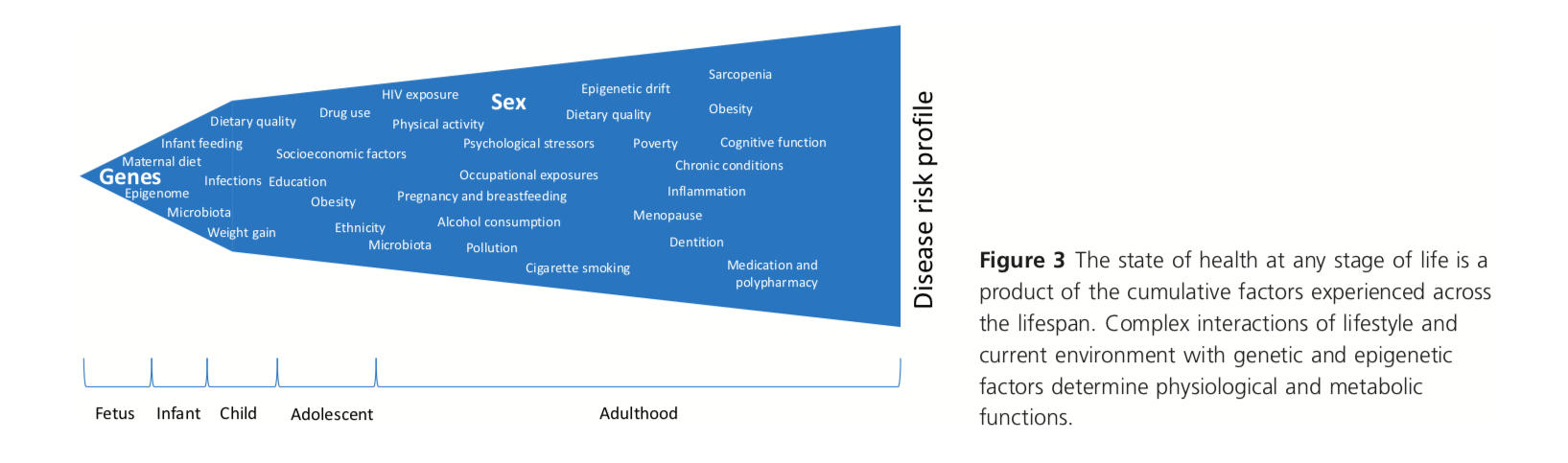 Calder et al., 2018
