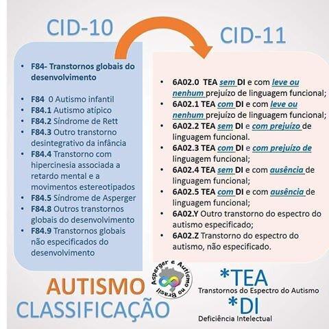 cid11.jpg