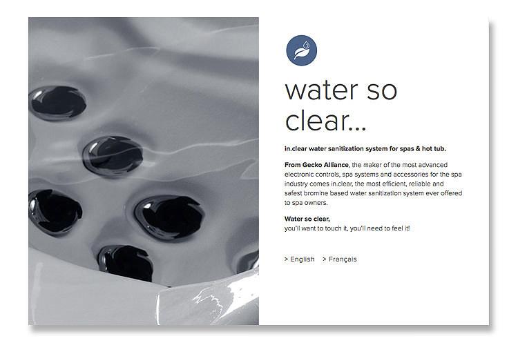 Web_Intro_Clear.jpg