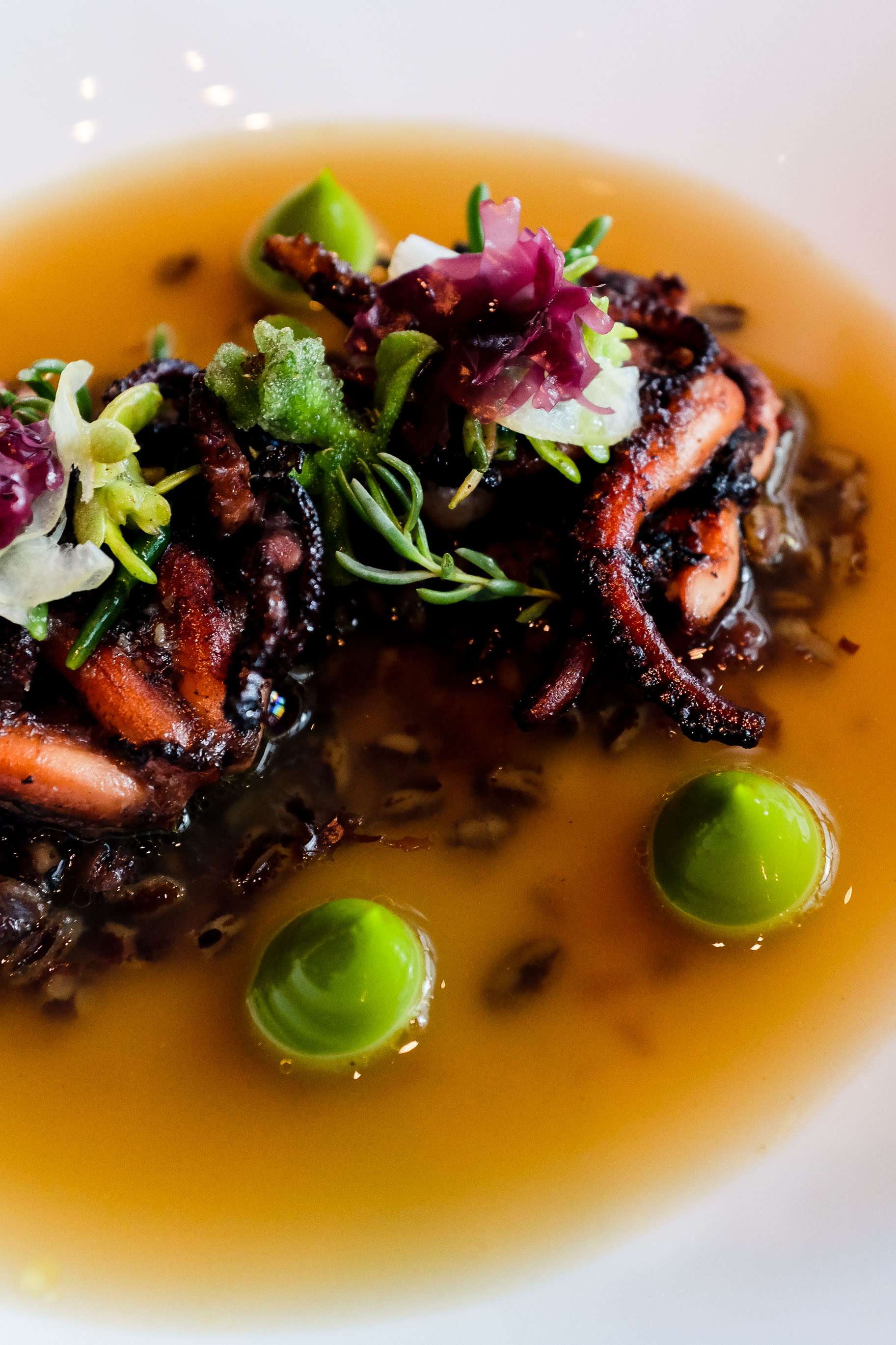 Frumenty (c.1390) -Grilled octopus, spelt, pickled red moss, chervil emulsion & smoked sea broth $38.00