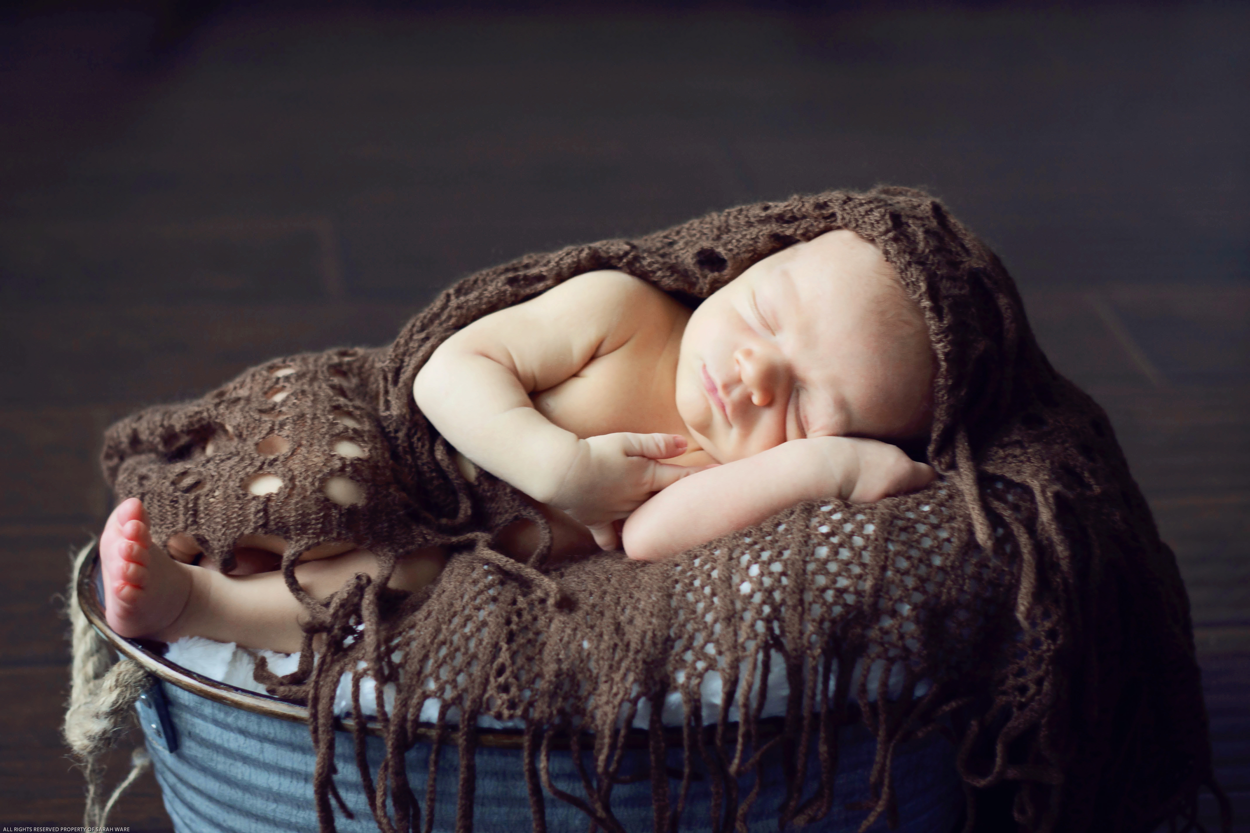 Newborn Session, Grapevine Studio