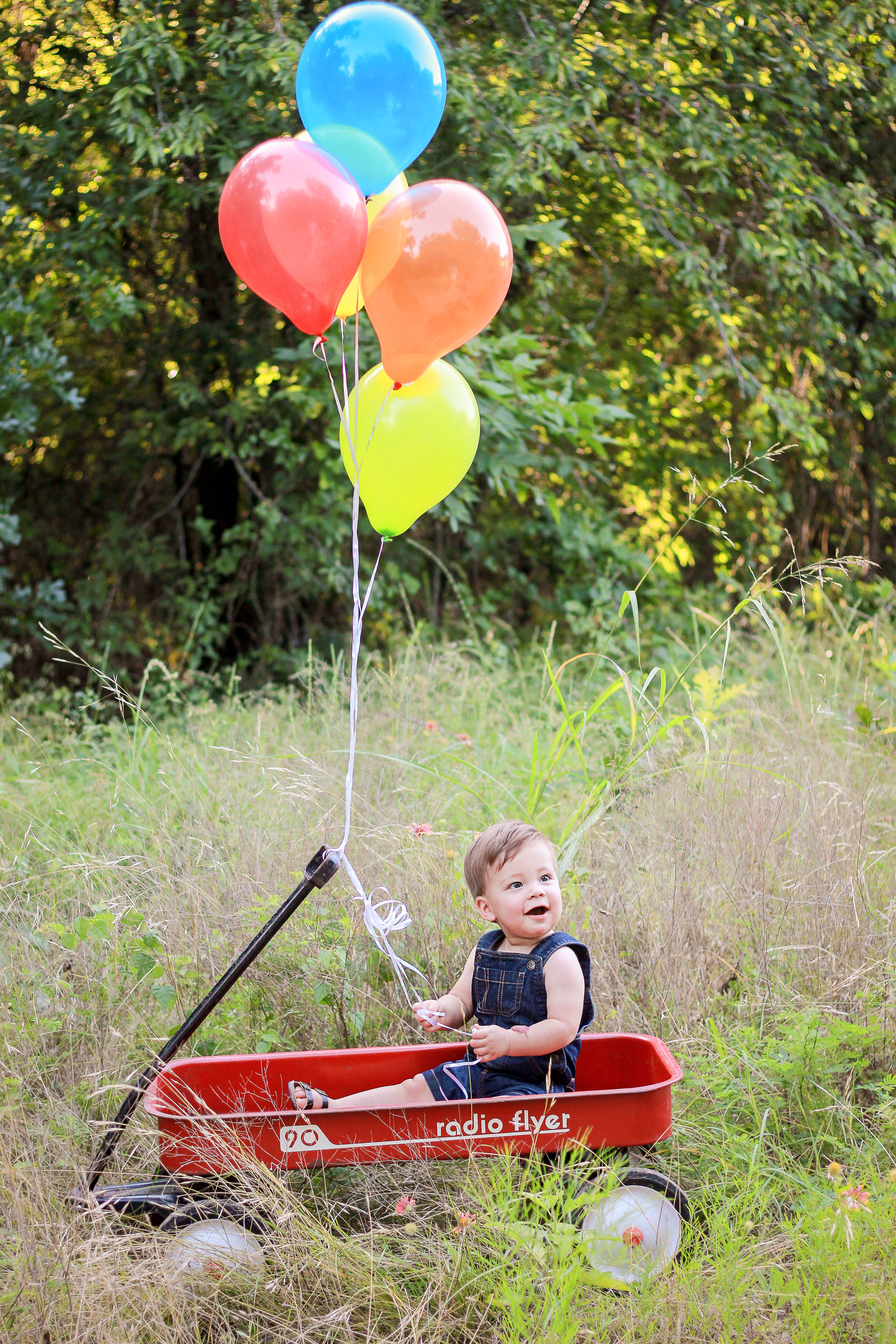 First Birthday Session, Arbor Hills Nature Preserve