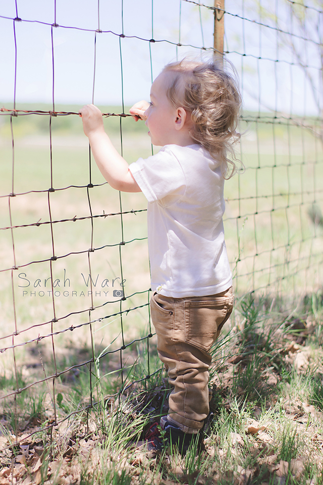 Two Year Old Photography Session, Jacksboro Texas