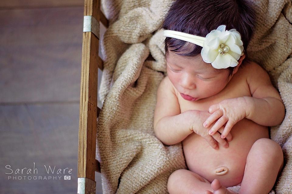 Newborn Session Sarah Ware Photography