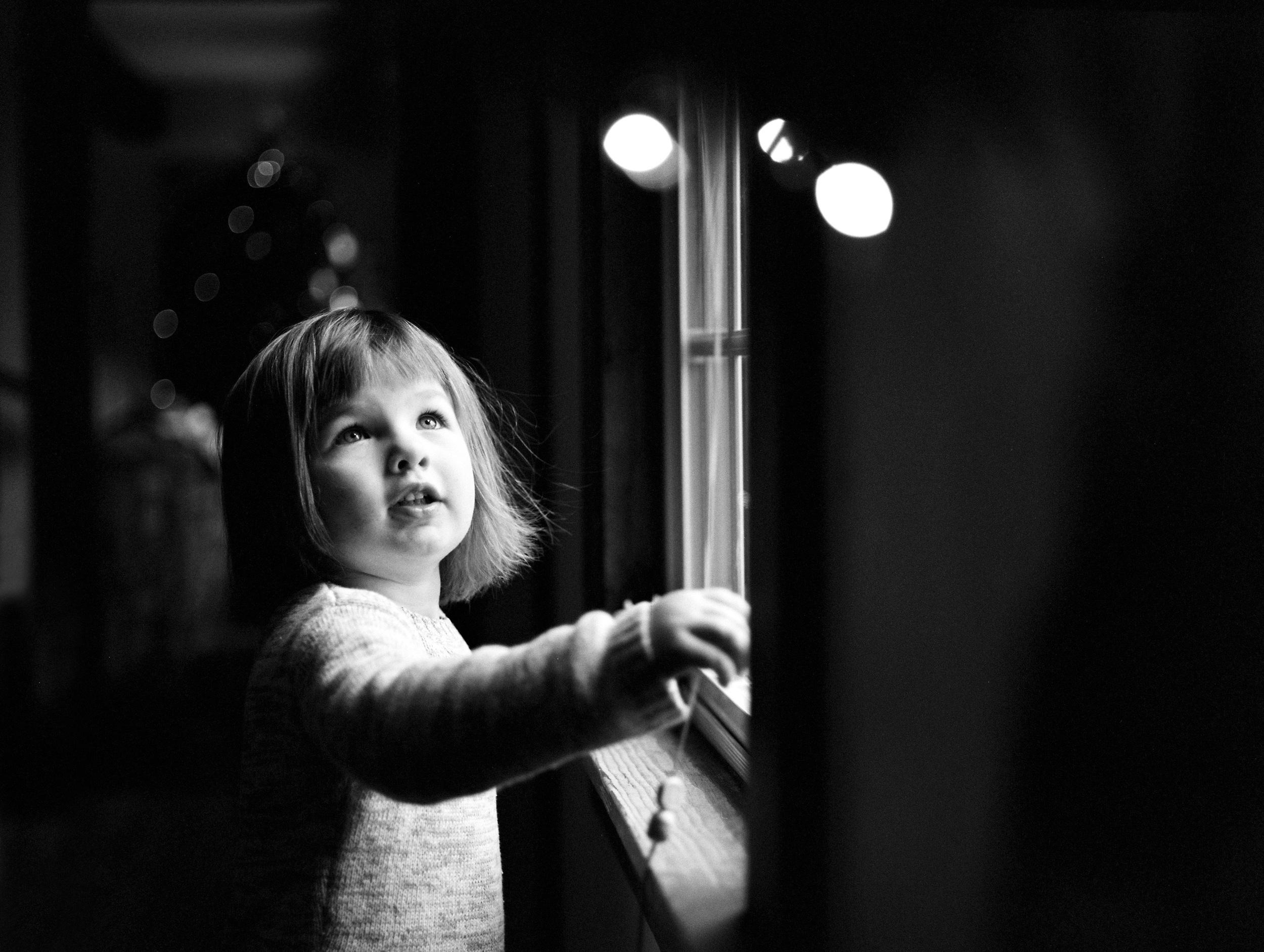 Window Light (645n :: HP5)   4a/366