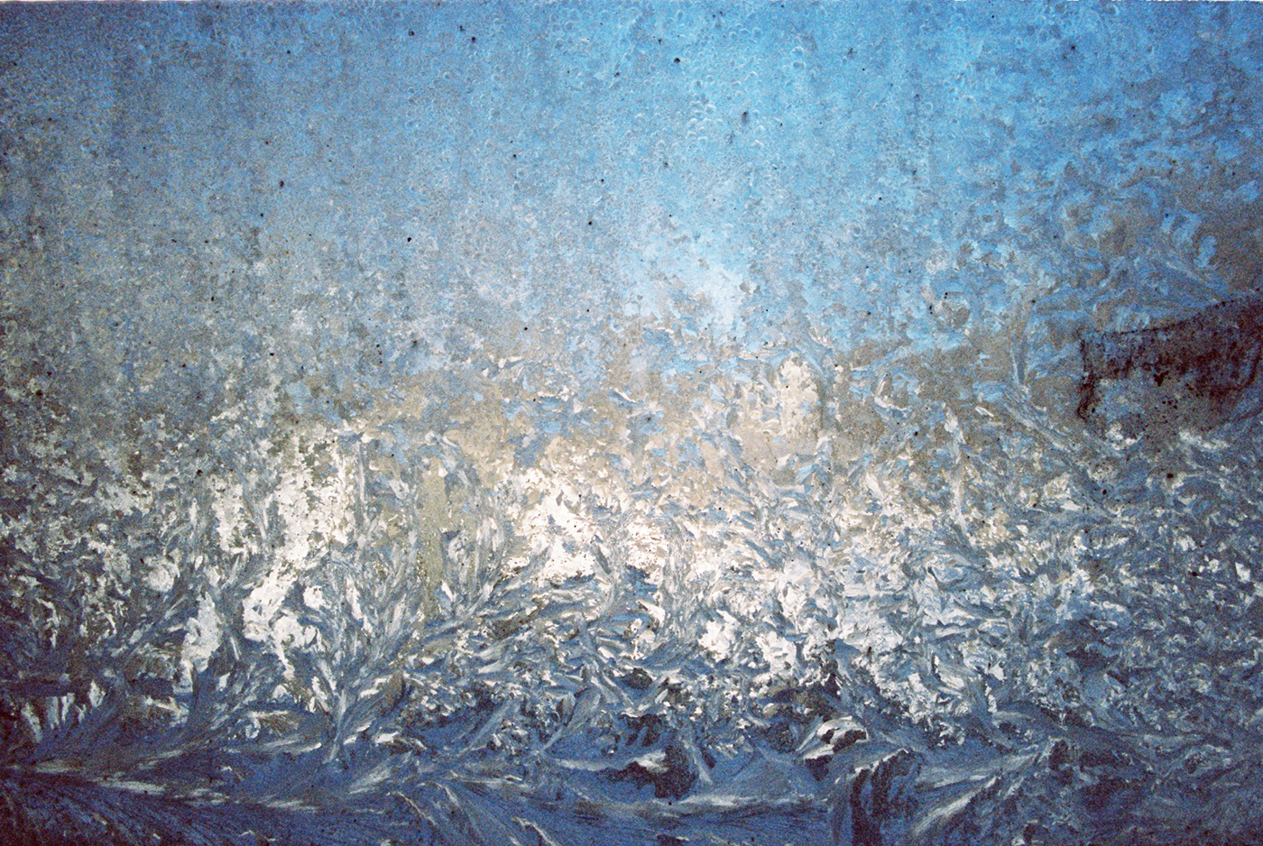 Ice on the inside (EOS 3 :: Kodak Gold 400)   12/366