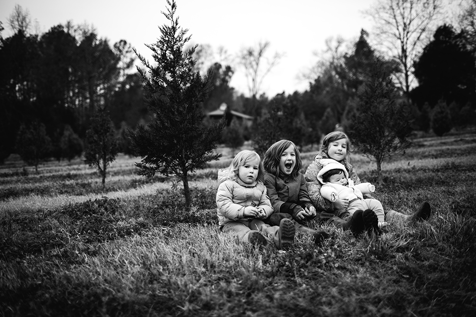 we went to the christmas tree farm today. when we got there, we were told that they were out of fir trees already due to a shortage this year after the forest fires in the mountains. we decided to hang out there anyway. you all played in the bounce house and on the swing set there. then i asked you to sit among the baby trees so i could take a photo of you. i assured you that there would be warm homemade donuts in it for you. i didn't dare ask you to smile at me though. just having you look in my direction was more than i ever expected. after a couple of quick snaps, we grabbed some donuts from the shop there and got into the warm car and headed down the road to get a tree from a roadside lot. the baby slept on the way. as we walked around the tree lot, it began to rain. through our shivers, we were happy. excited about winter. about christmas. it felt good to feel excitement for a change. today didn't turn out as planned. but sometimes the unexpected can be even sweeter than the expected.     Photo by Heather Robinson Photography     Blog :: Facebook