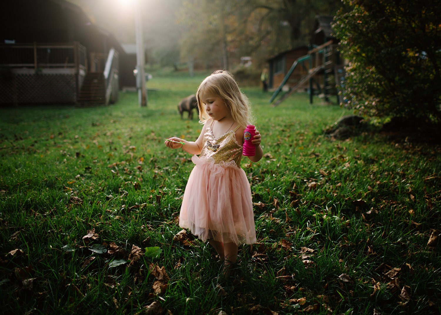 Now you are four.   Photo by Heather Robinson Photography     Blog :: Facebook