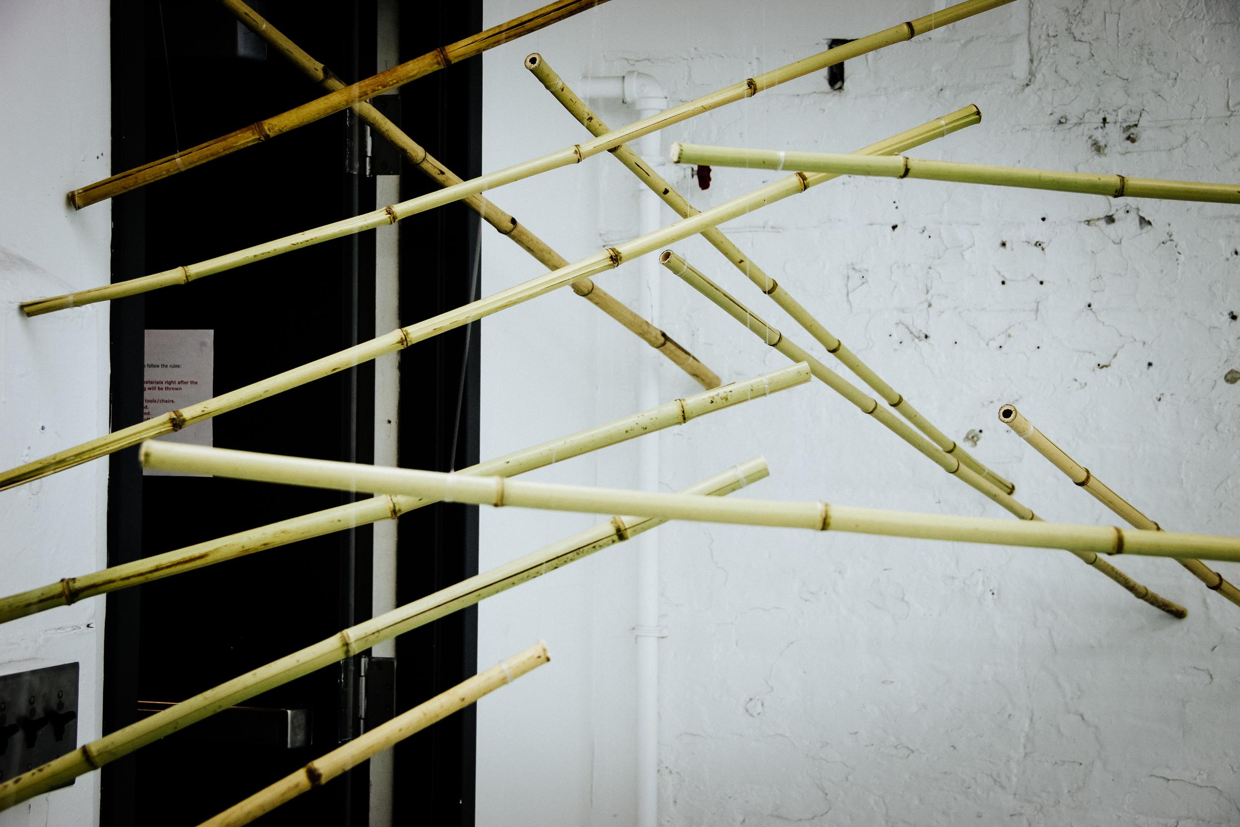 Bamboo Installation-2.jpg