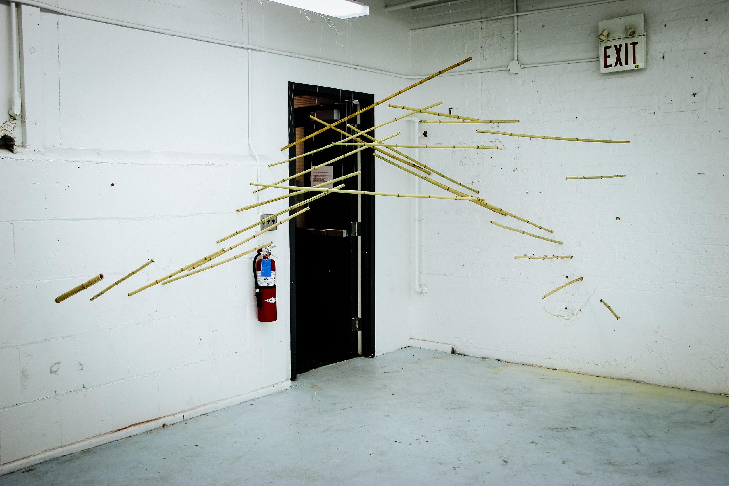 Bamboo Installation-7.jpg