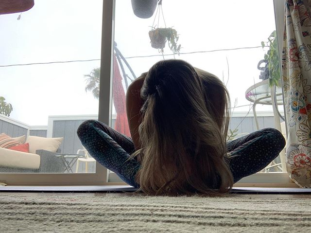 👁Seek within 💠 #yogawithpup 🐾
