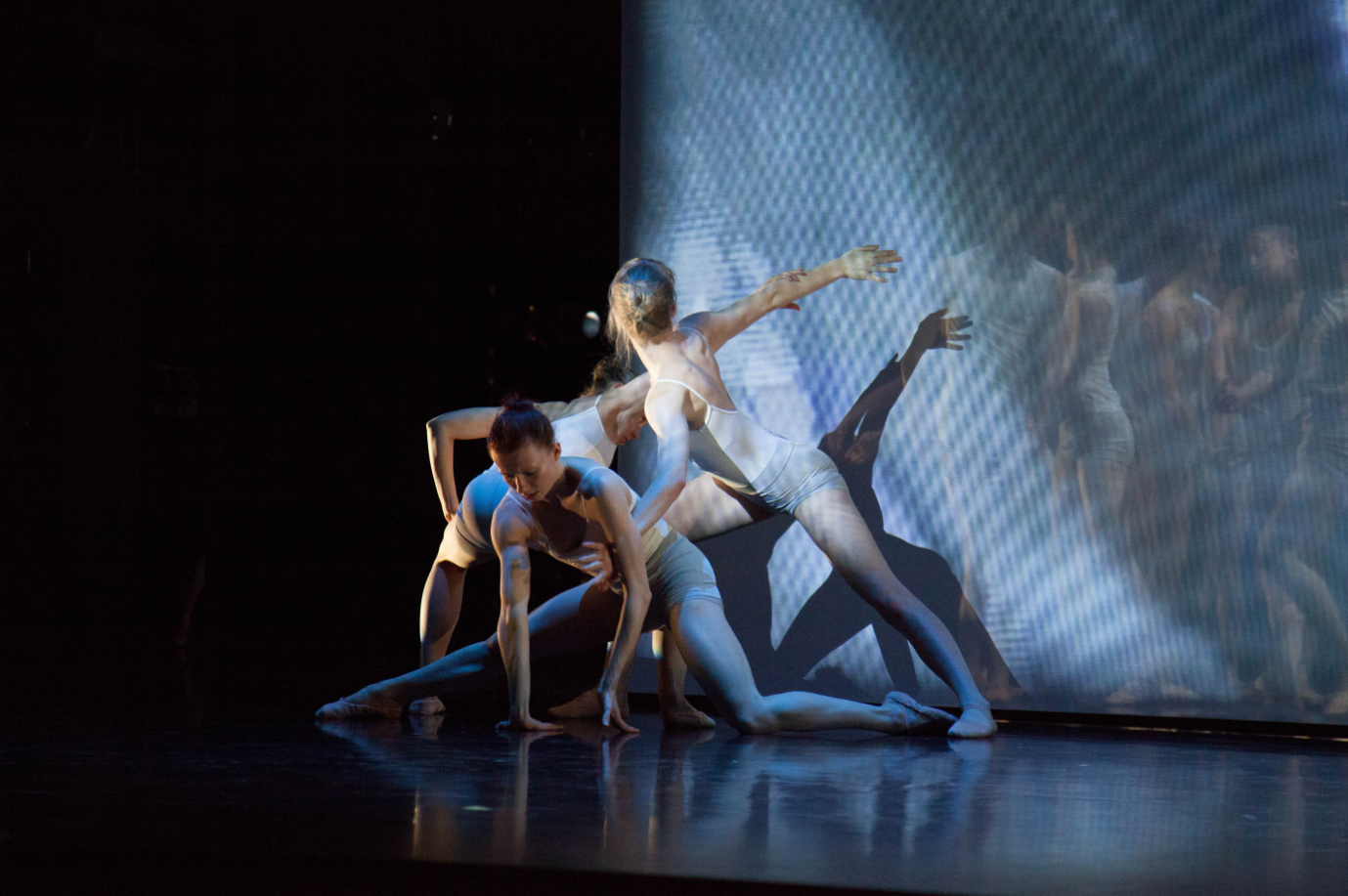 A blended cast of international students in Toronto interact with dancers in Amsterdam via live streaming during the performance of  Stream , choreographed by Shaun Amyot and Michael Schumacher.