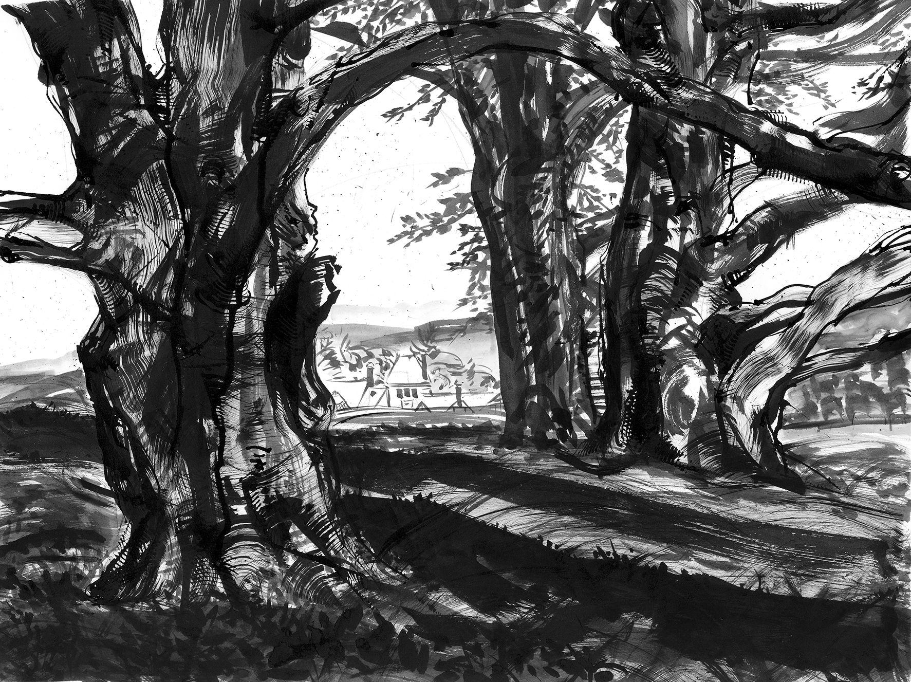 Rocky Trees2.jpg