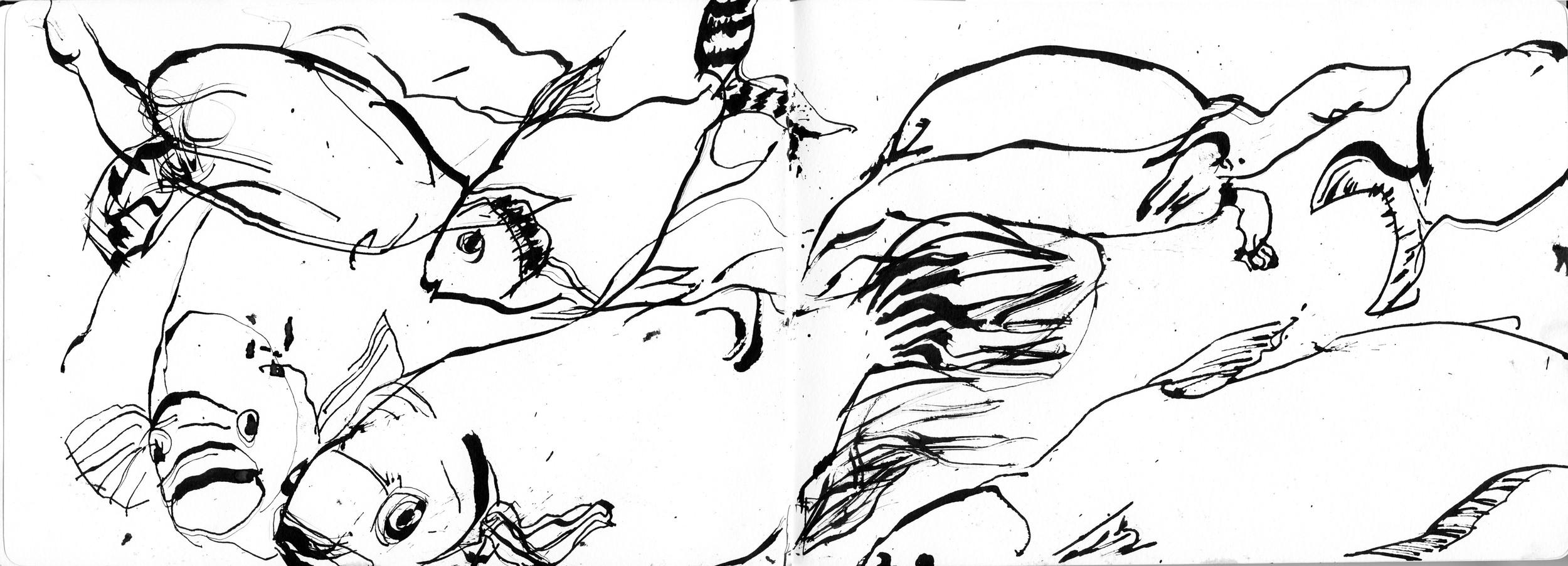 Ink Fish.jpg