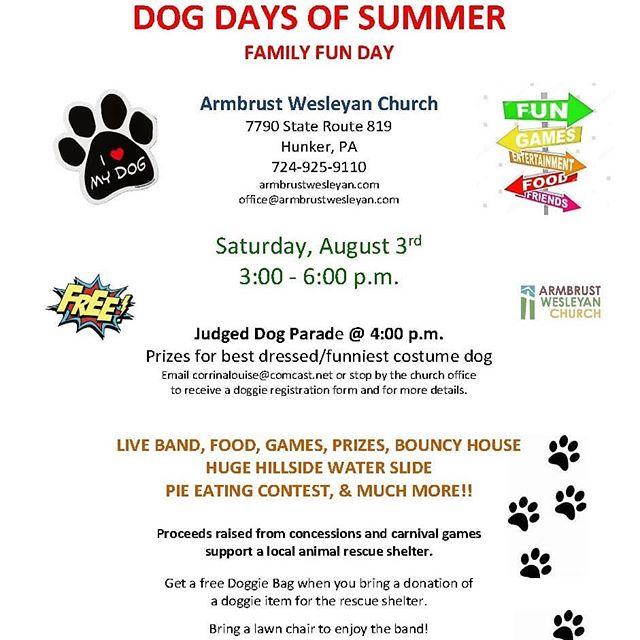 Join us tomorrow. Hill side water slide, dunk tank, live band, lots more! Bring your pooch if you like.