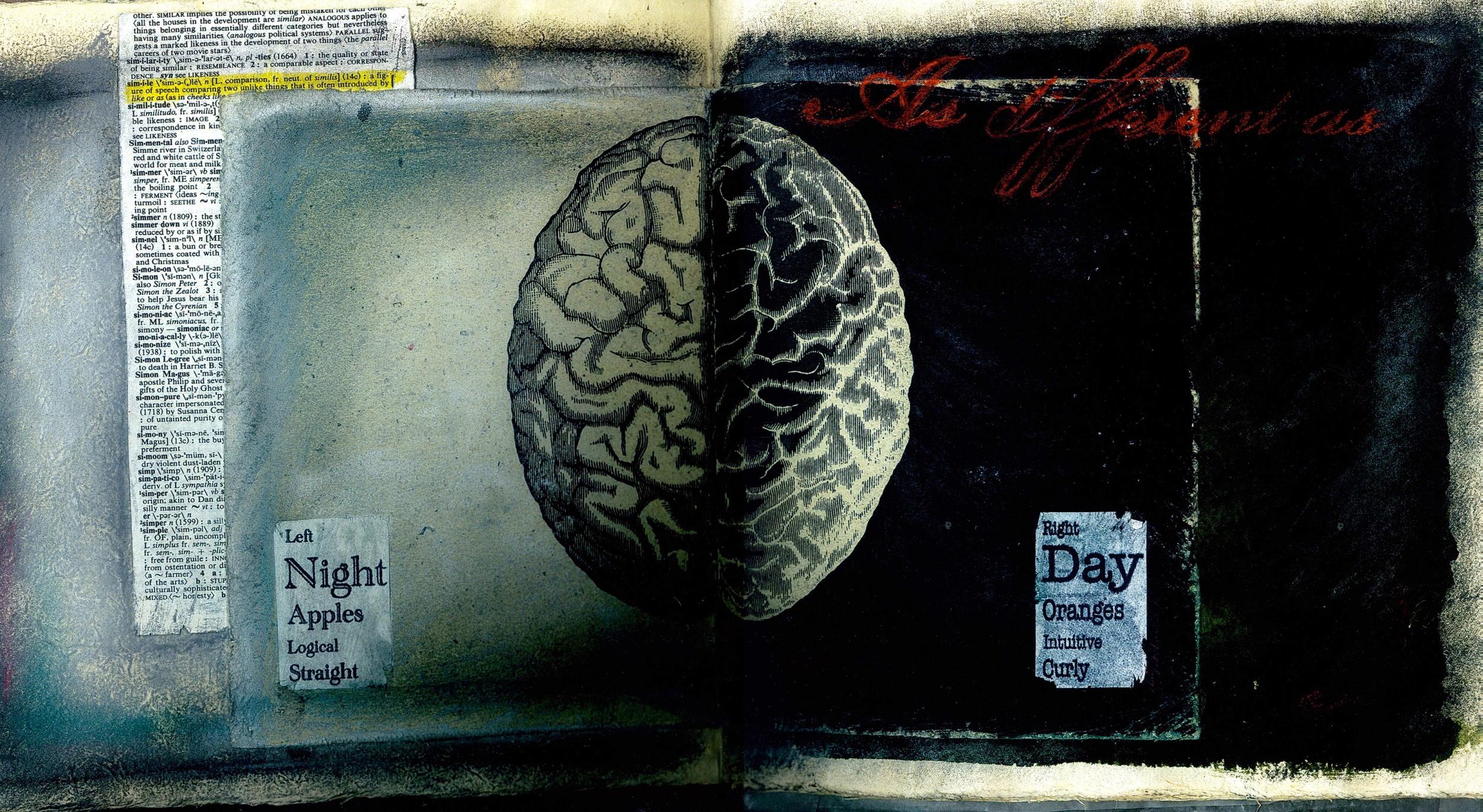 Day-and-Night-Brain_2_2.jpg