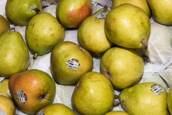D'Anjou Pear, Organic
