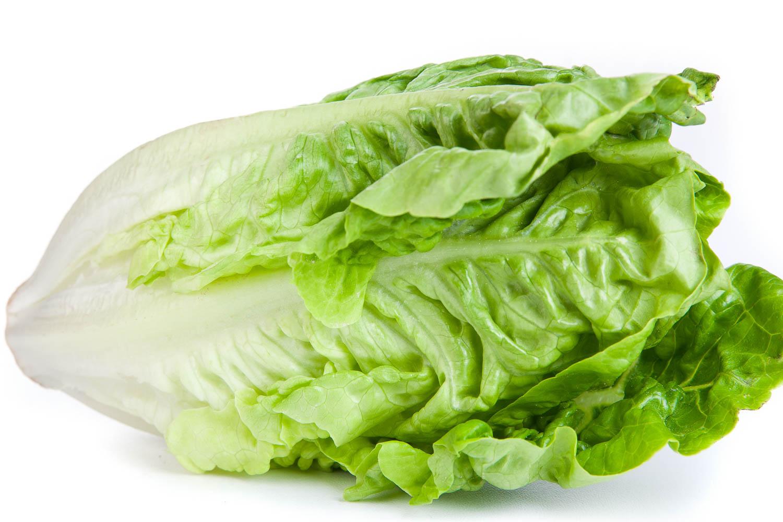 Lettuce Romain Head shutterstock_888585853x2 1500w.jpg
