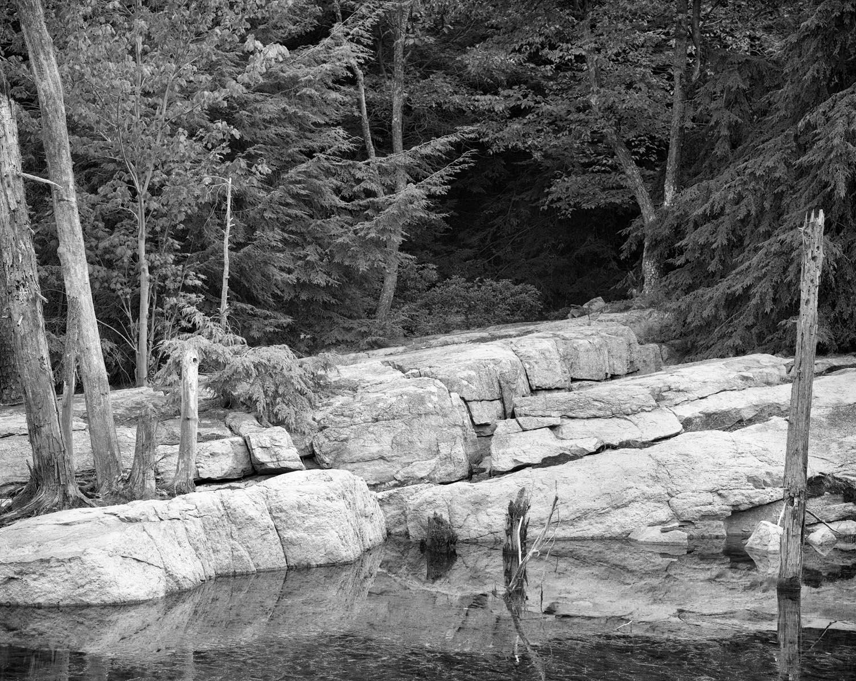 Shoreline at Hemlock Pond