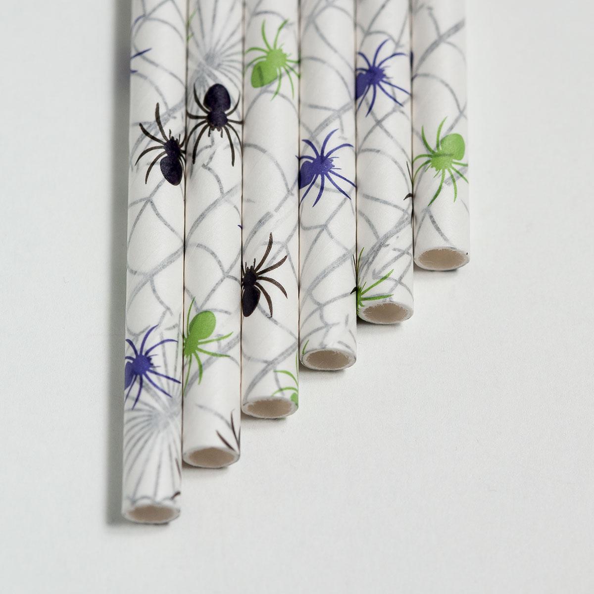 SpidersOnWebs.jpg