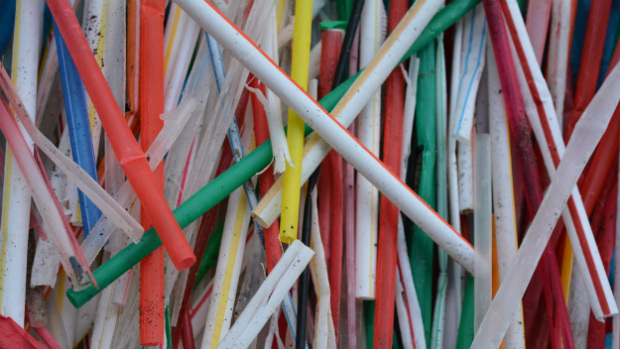 Plastic straws picked up from the beaches in Bolinas over the span of a week in January 2015. (Photo Credit: Heather Itzla)