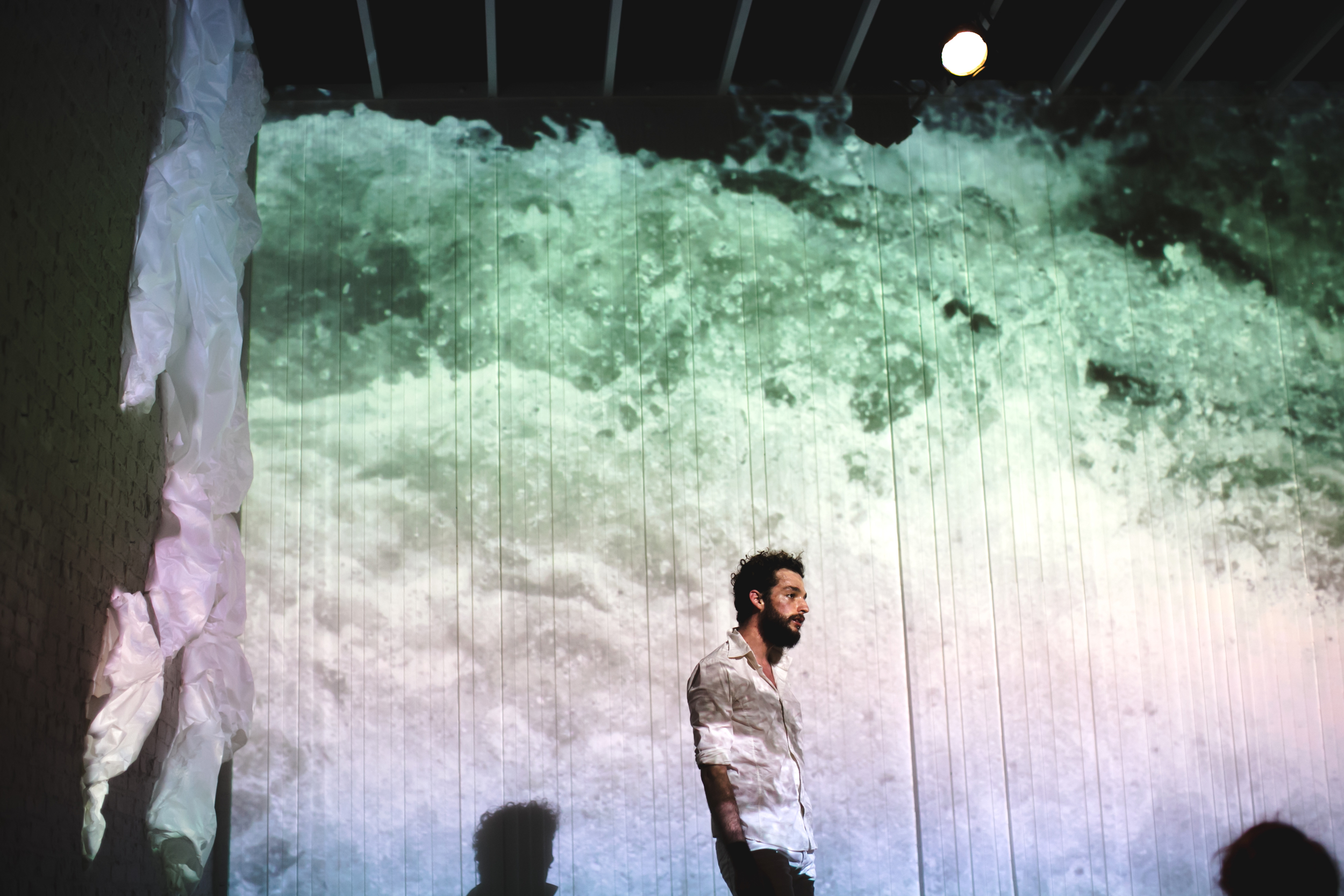 A multimedia performance by LoudHoundMovement, presented by Gowanus Art + Production.  Photo: Chellise Michael.