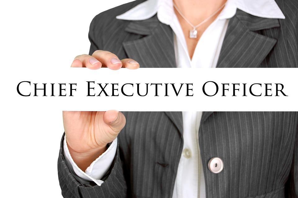 CEO businesswoman.jpg