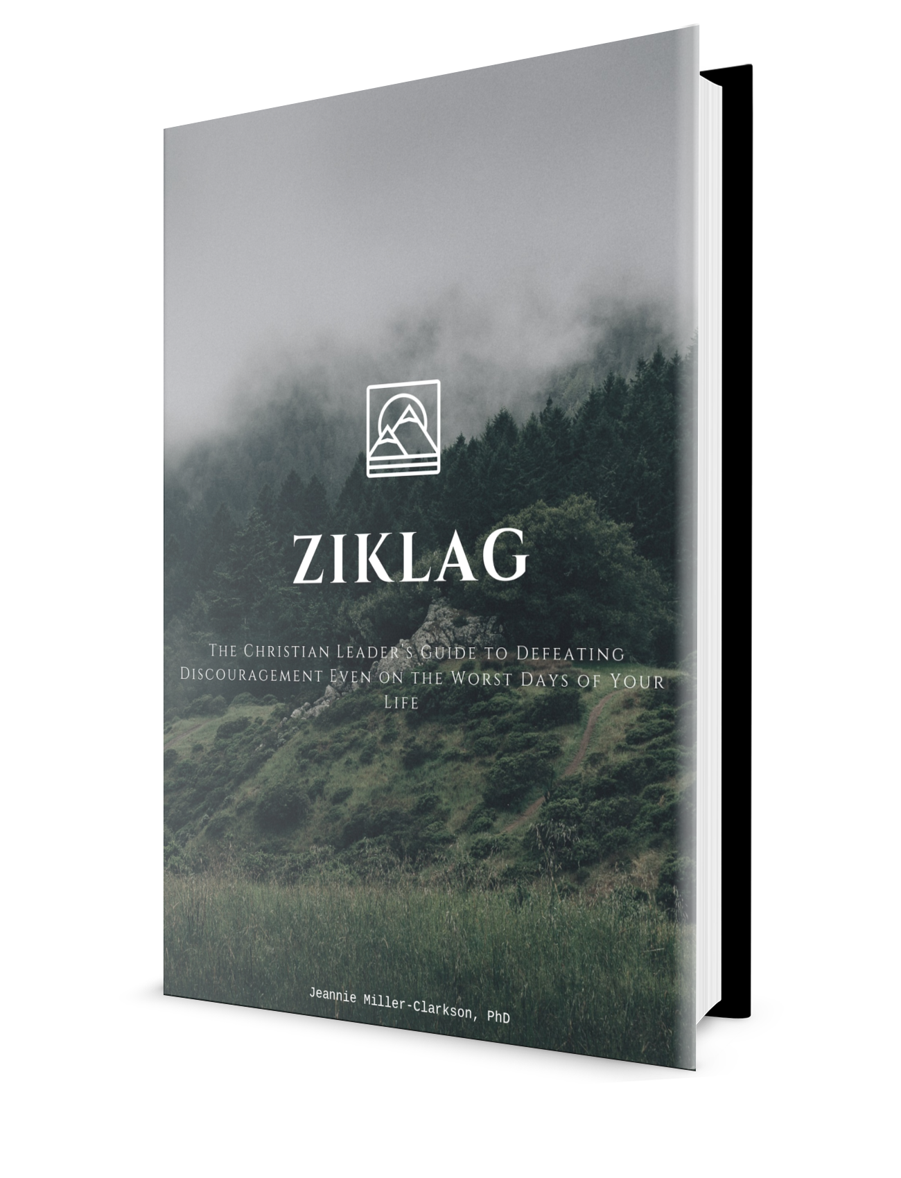 Free download. Ziklag: Overcome Discouragement Even on the Worst Days of Your Life. Bible Study, Self-assessment, Personal Case Study and Small Group Discussion Guide.