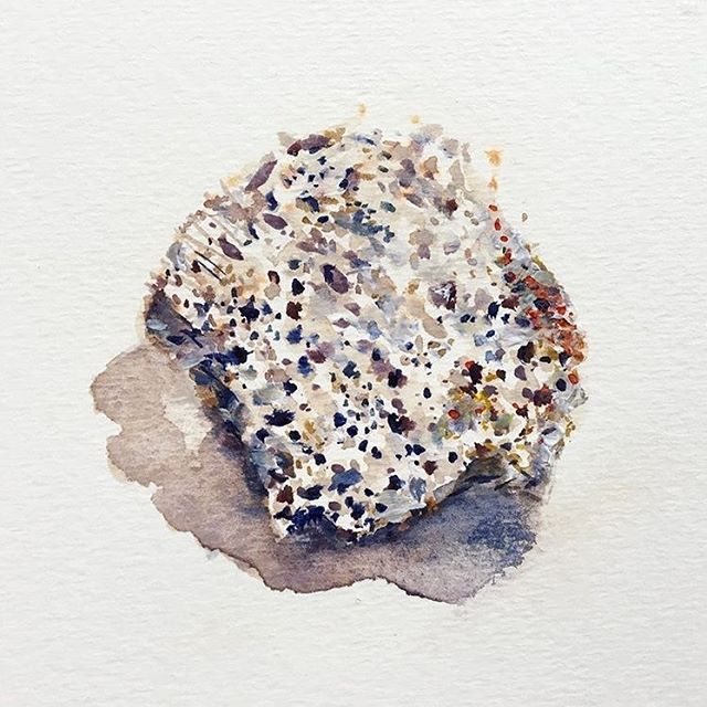 From Shell Series. 2017 #watercolor