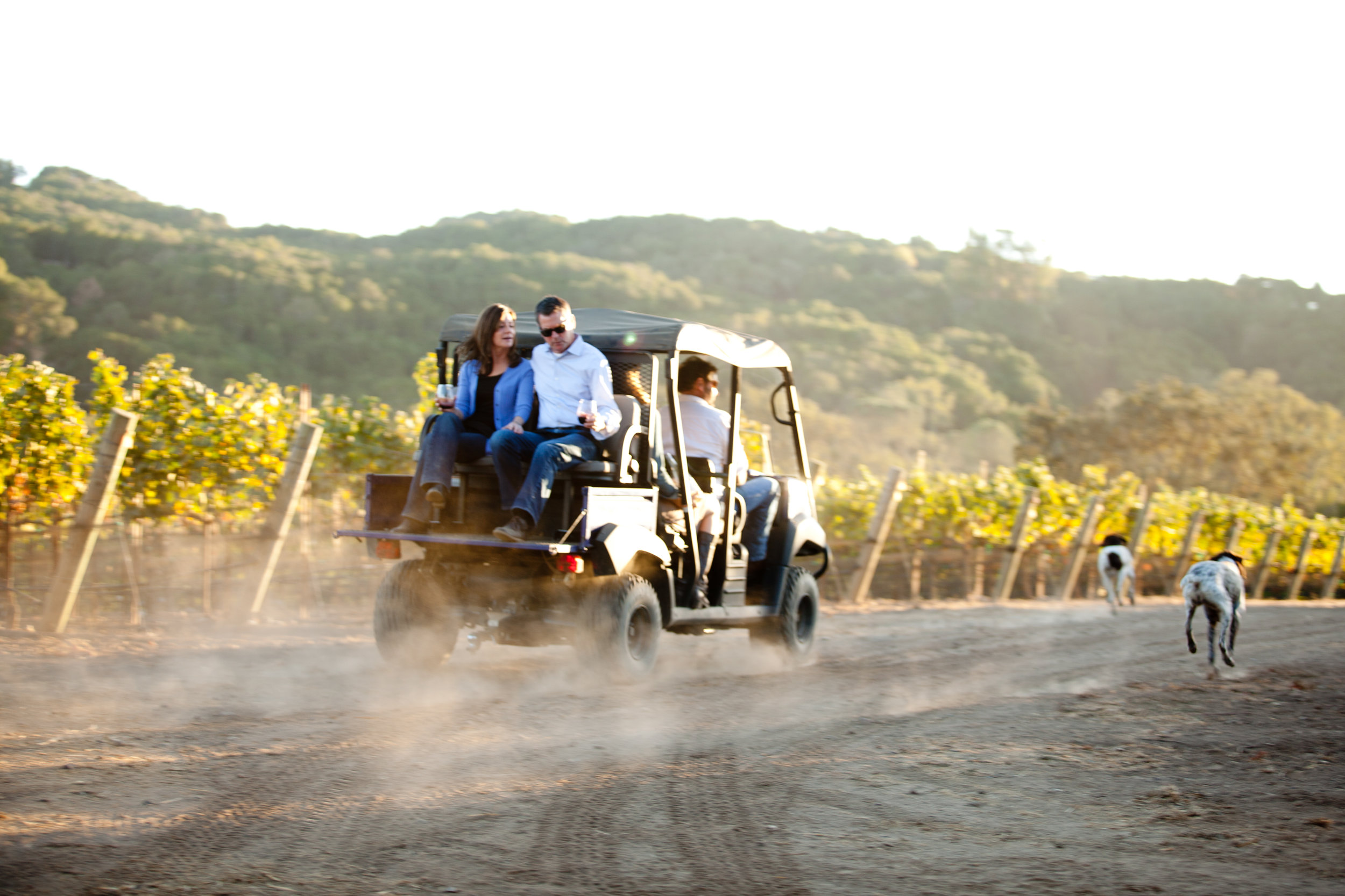 Winn and ted go off roading, napa style.