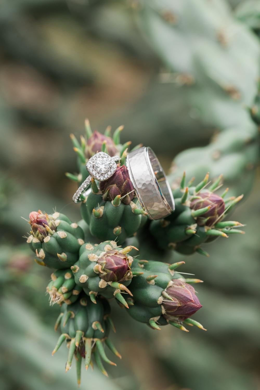 ring shot - macro