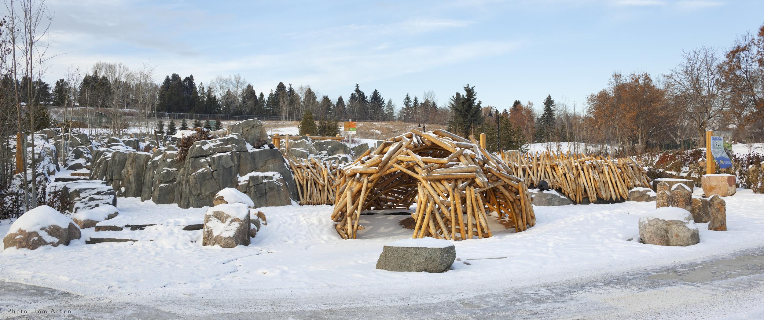 Edmonton Zoo Nov2014 (27).jpg