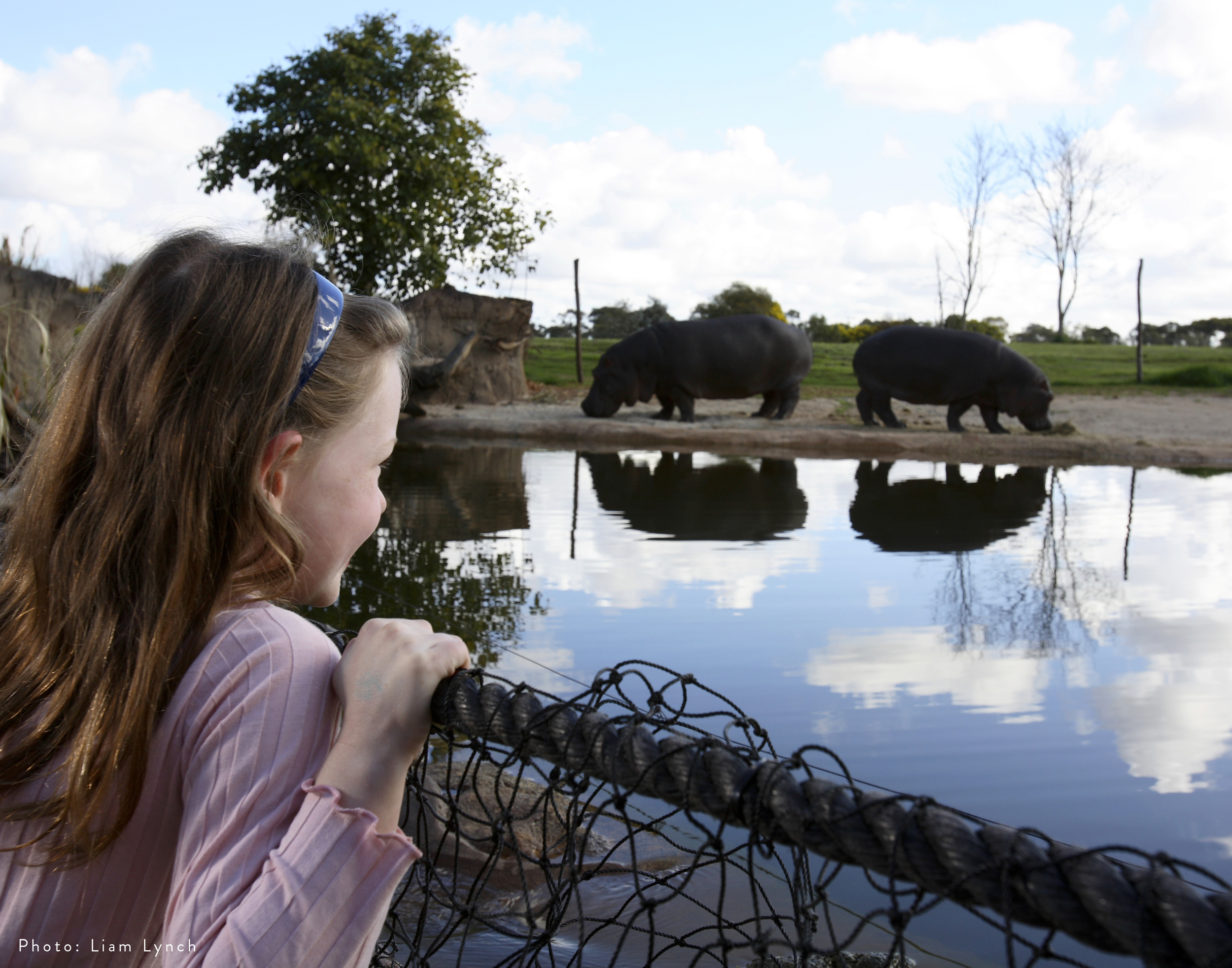 Werribee Open Range Zoo | Hippo River