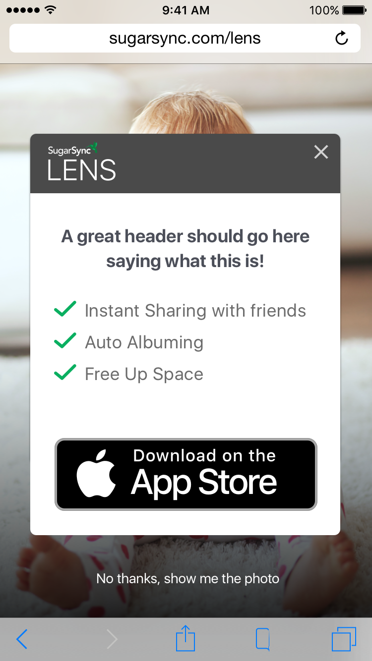 Landing Page Mobile Popup.png