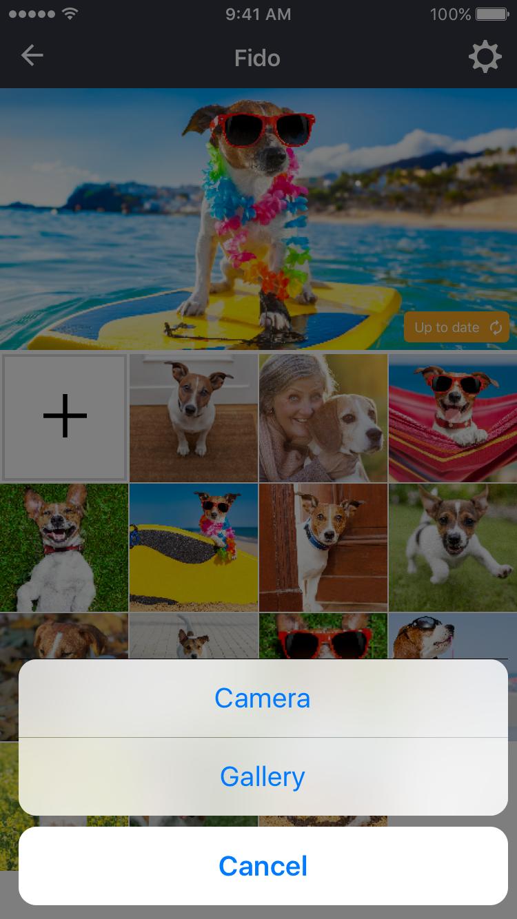 My Lens Folder Add Media.png
