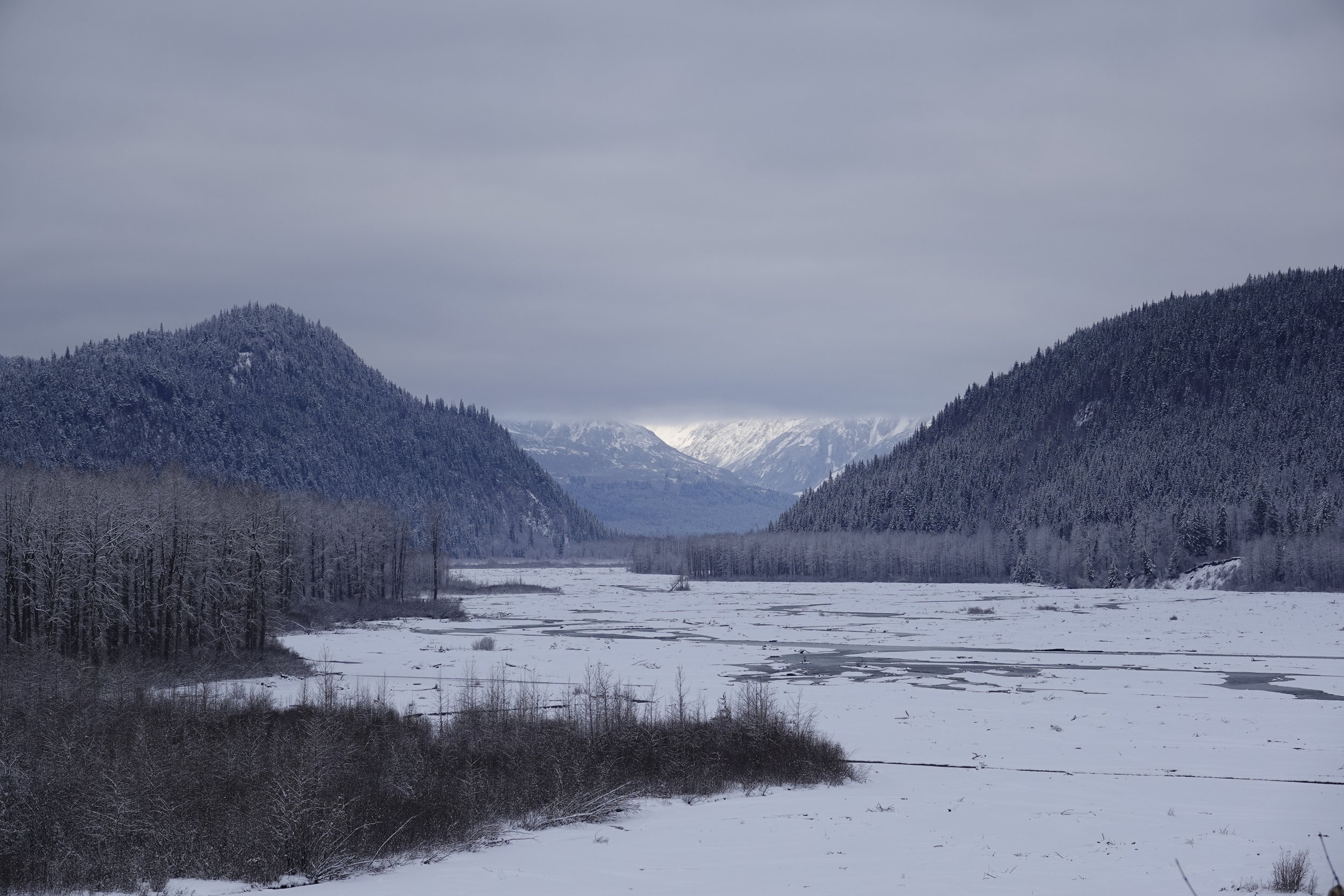 Seeing the light in Haines, Alaska.
