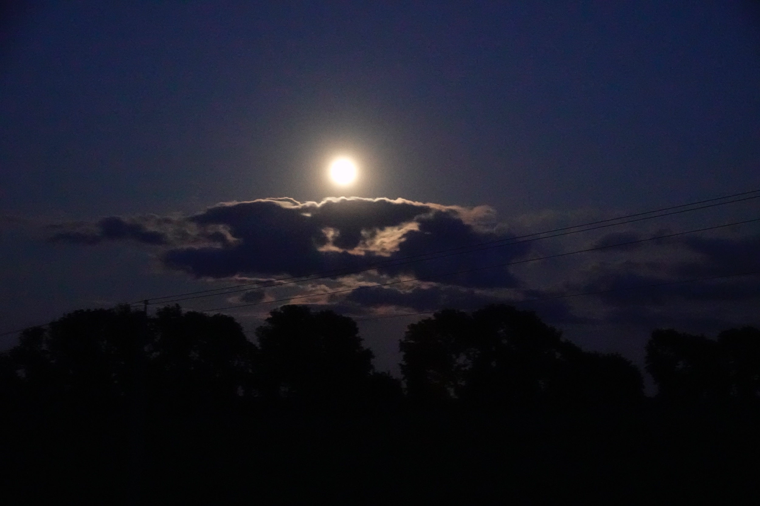 Well, it's a marvelous night for a moondance.