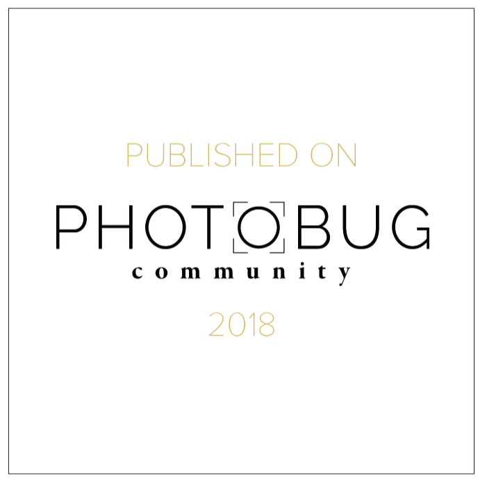 Aaron Daniel Films - Photobug Community