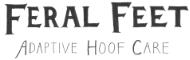 Feral-Feet-Wordmark-Final-transparent.png