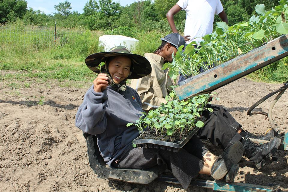 Farmer Mentor May Lee using the water wheel transplanter.jpg