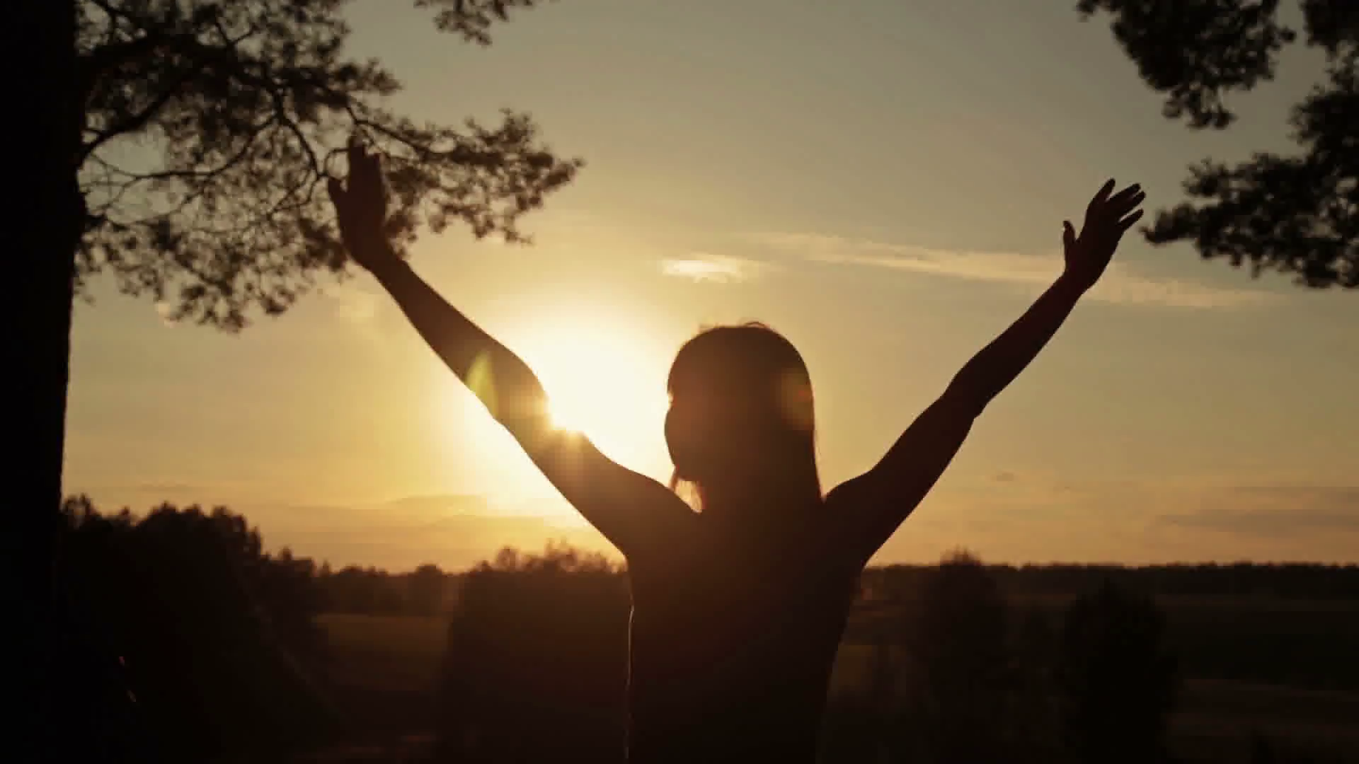 happy-young-woman-silhouette-against-bright-golden-sunset-lifts-hands-up-in-air-sunset-light-sun-lens-flares-golden-hour-freedom-and-happiness-concept_hcyqknco_thumbnail-full05.png