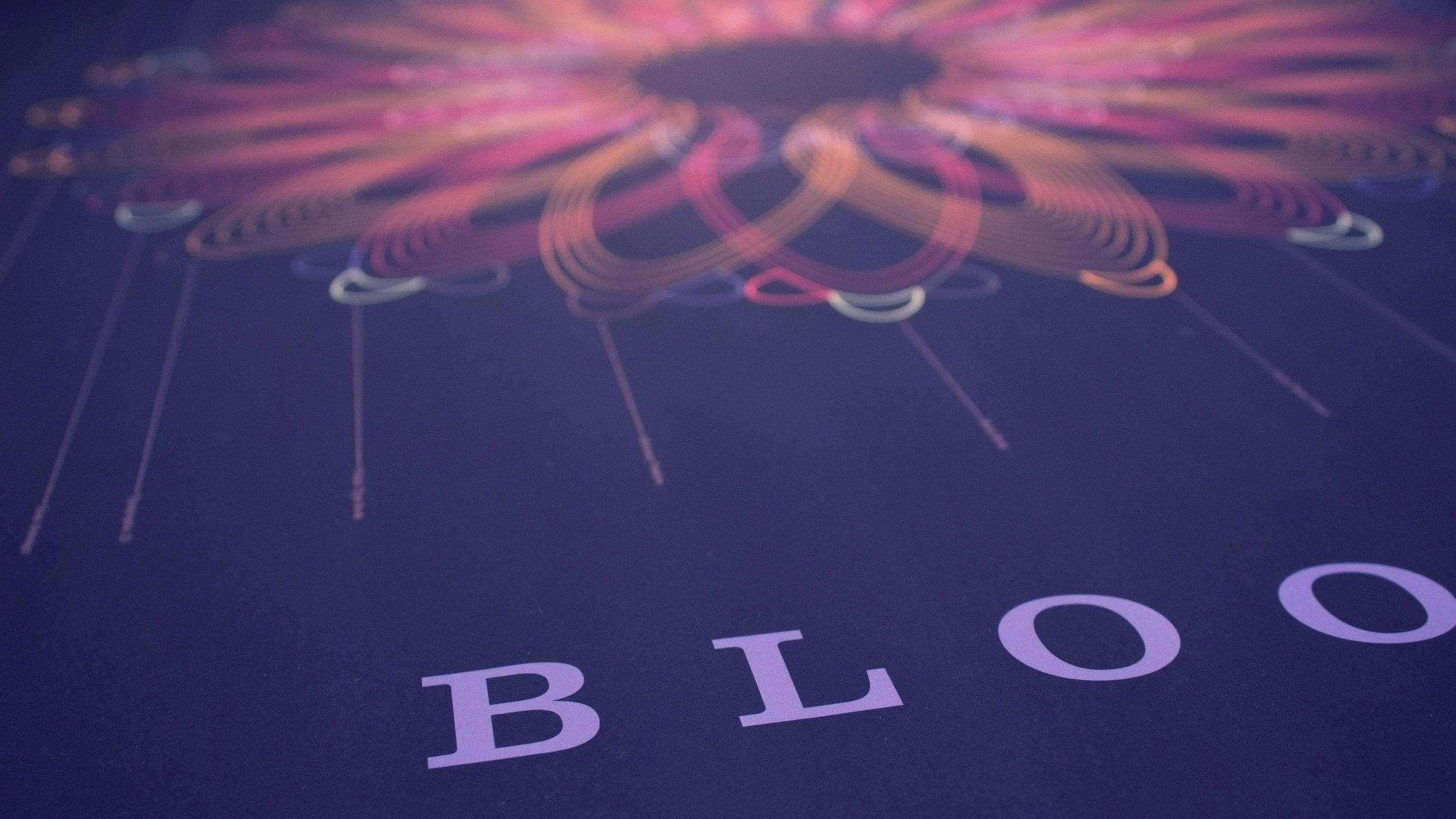 Blooms_sqspc3.jpg