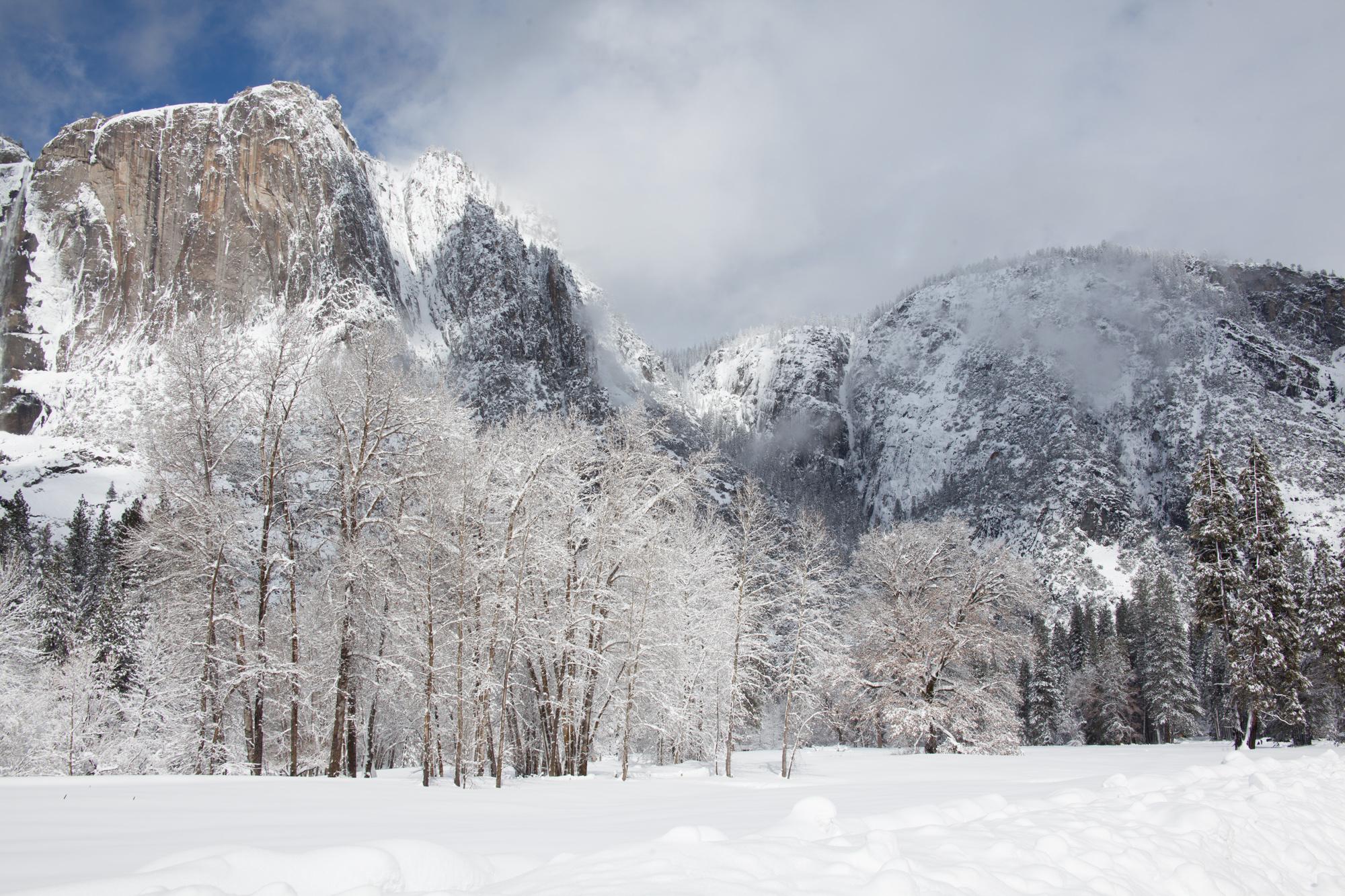 2019-02 Yosemite-11.jpg