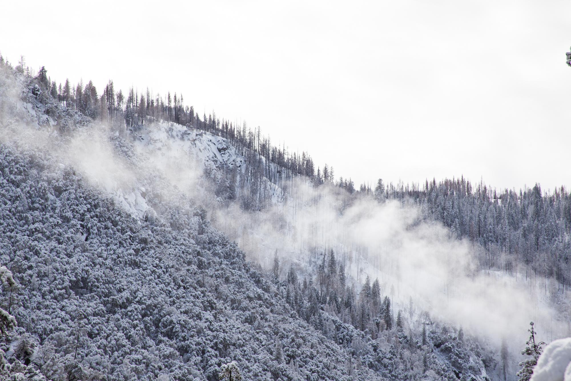 2019-02 Yosemite-13.jpg