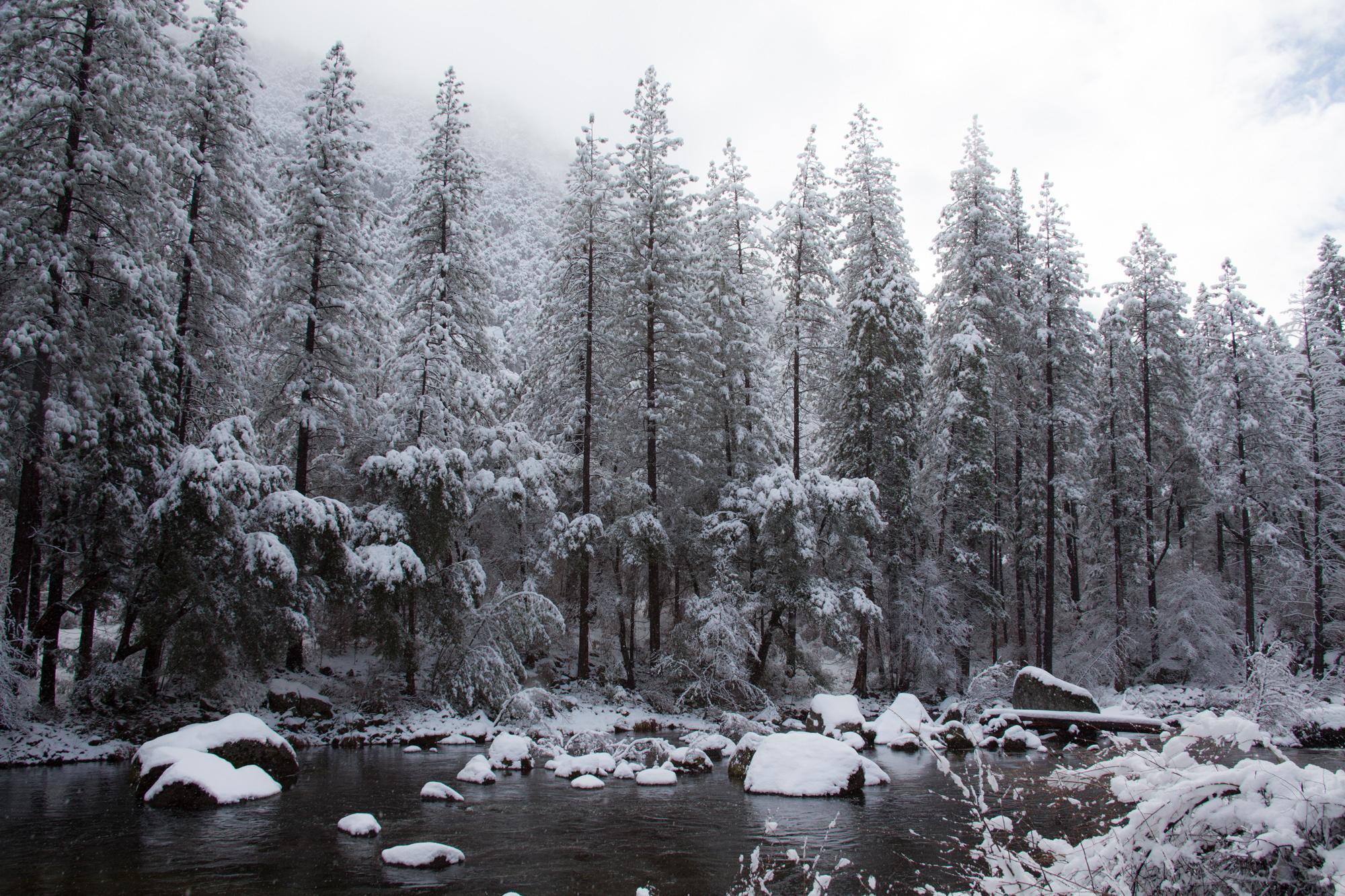 2019-02 Yosemite-16.jpg