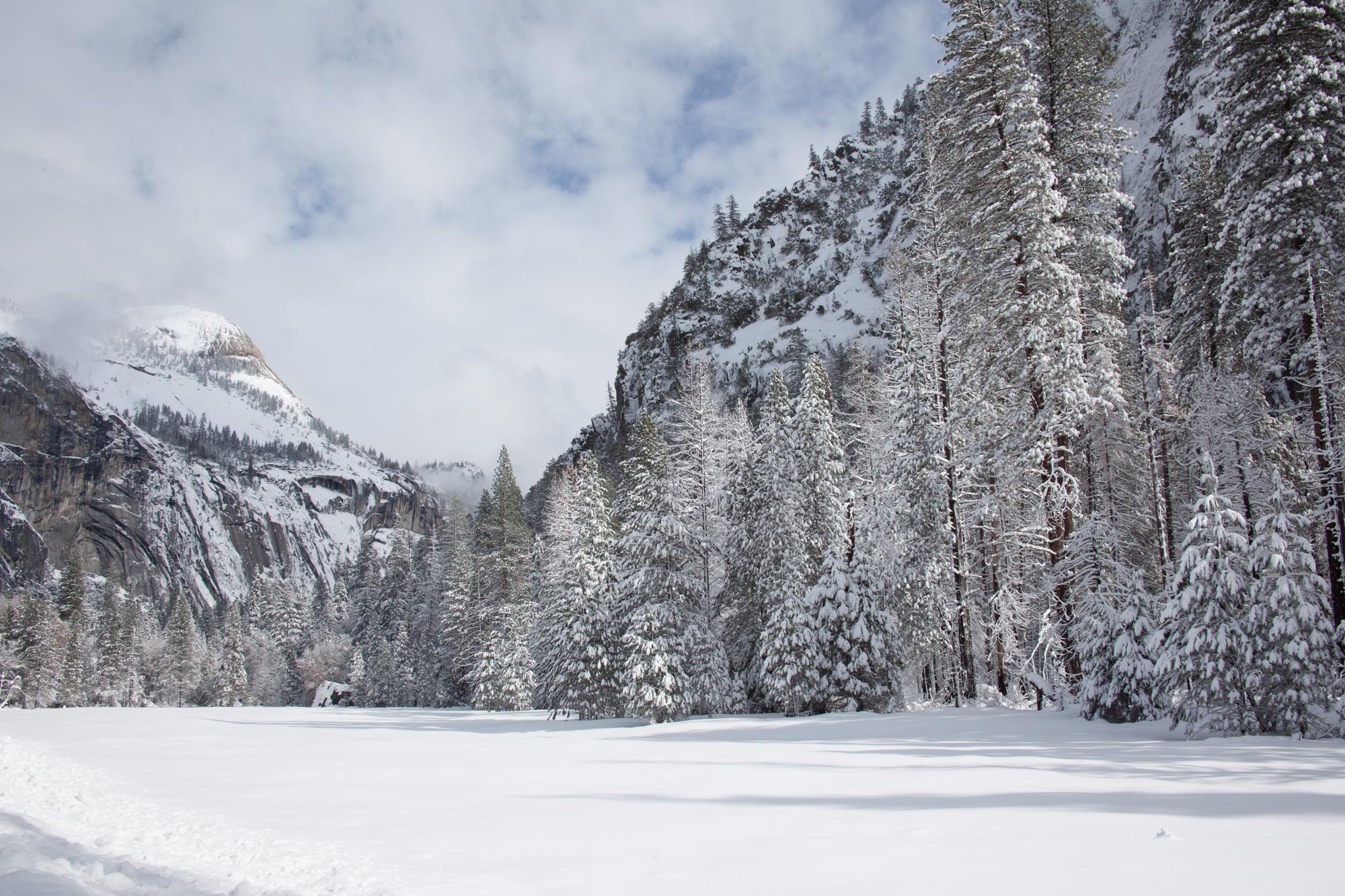 2019-02 Yosemite-17.jpg