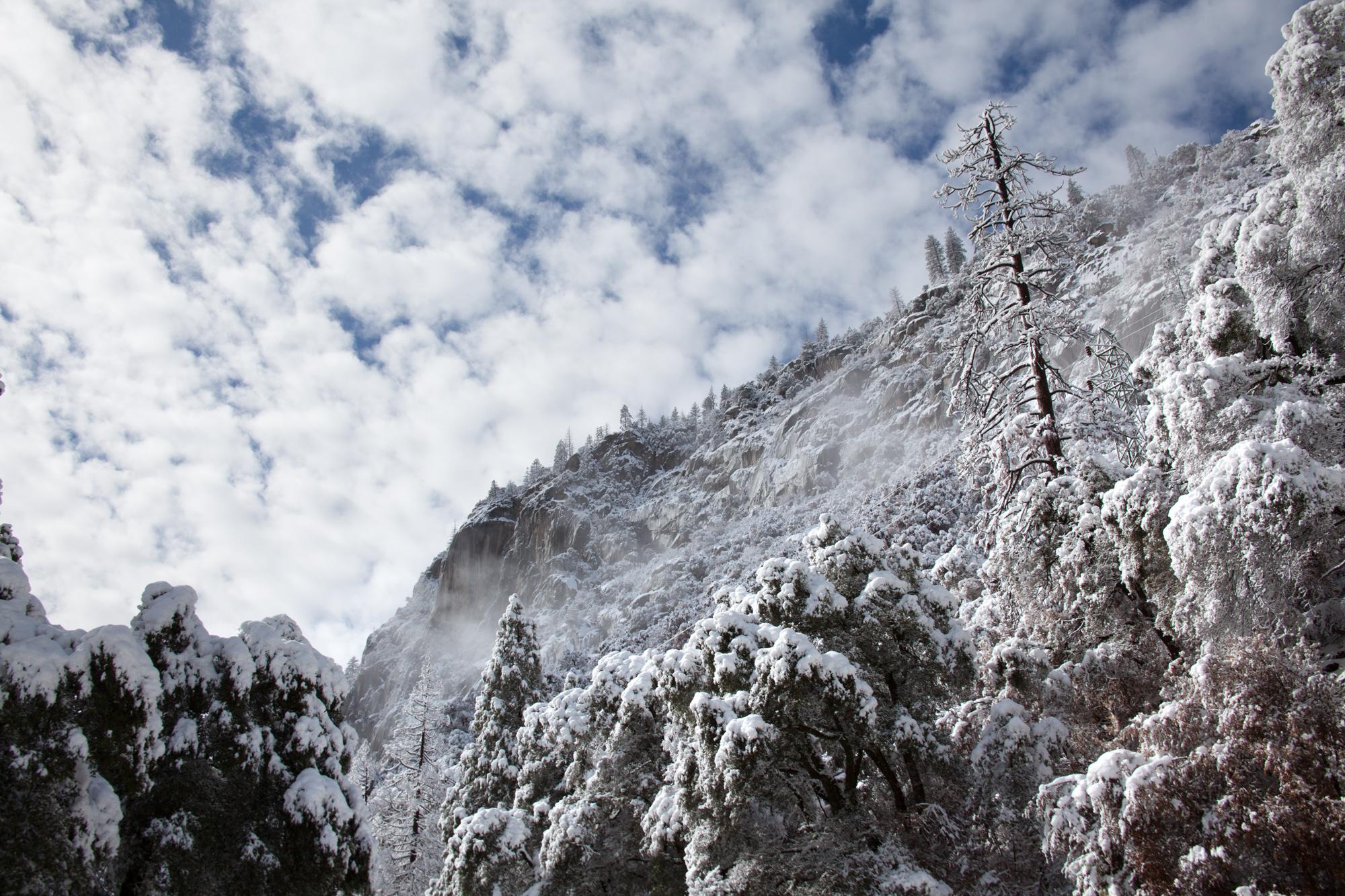2019-02 Yosemite-24.jpg