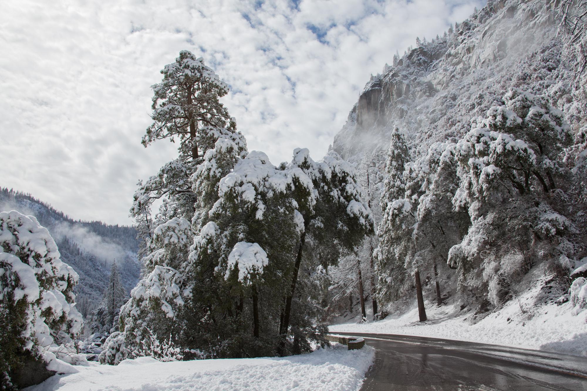 2019-02 Yosemite-27.jpg